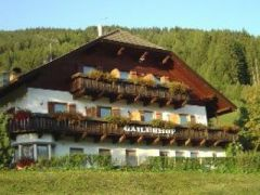 Hotel Gailerhof**