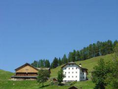 App. Lüch Rudiferia