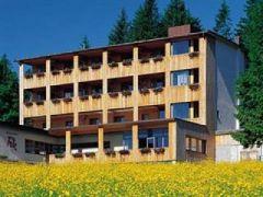 Hotel Berghof Fetz