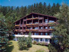 Ferienhaus Schiwiese