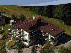 Caminetto Srl - Hotel Alaska